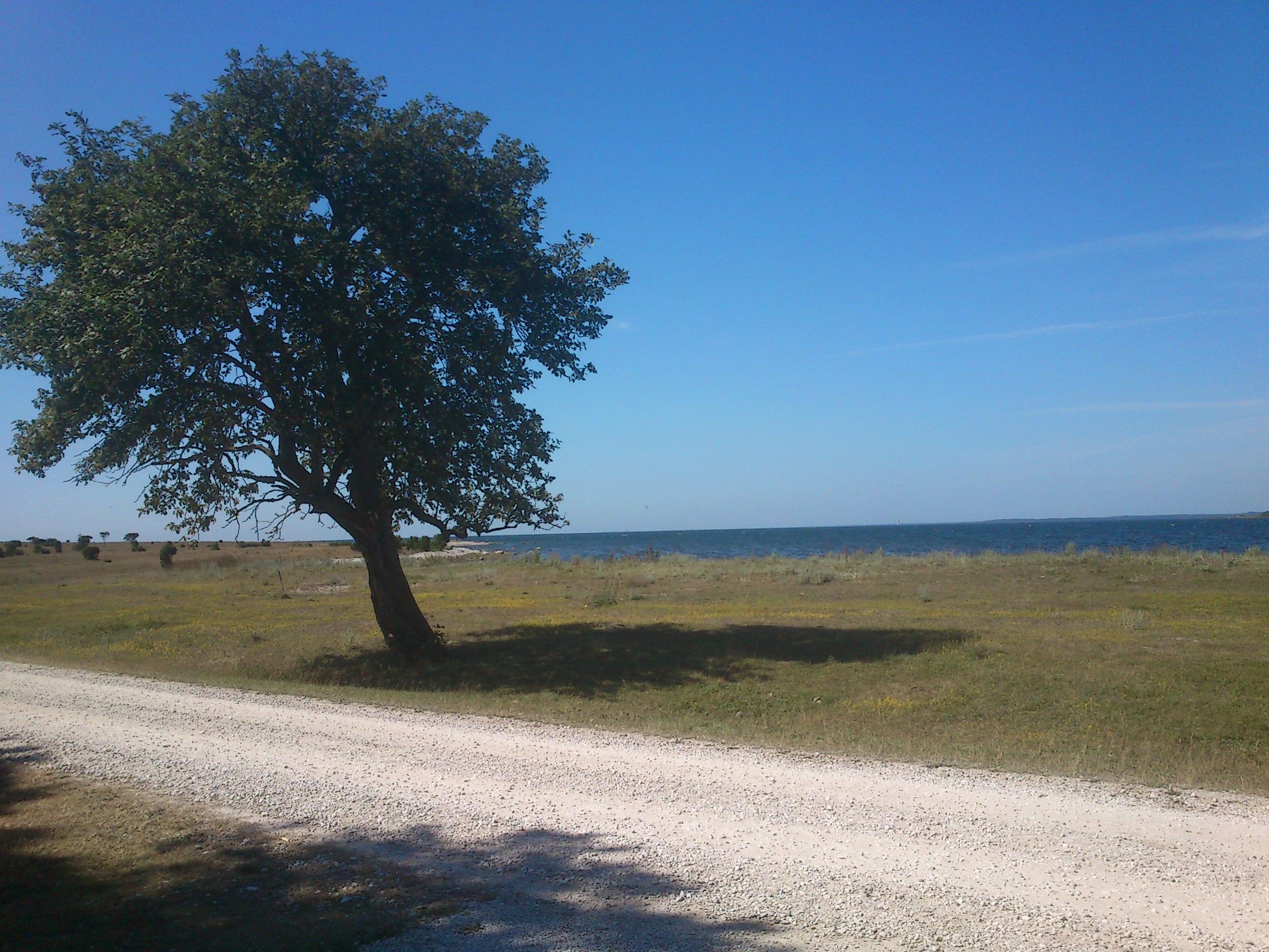 Vackra Gotland