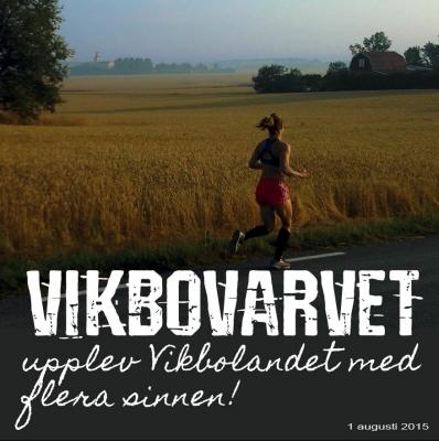 bild_vikbovarvet
